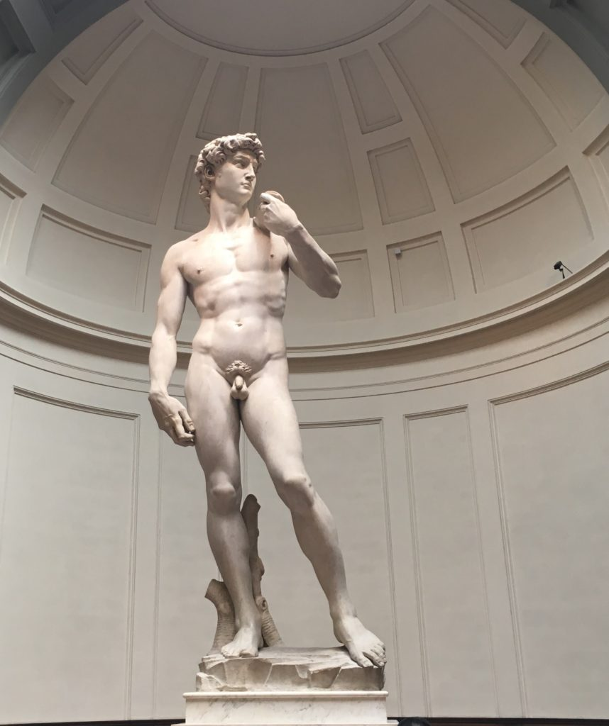 Michelangelo's David (at the Academia Gallery)