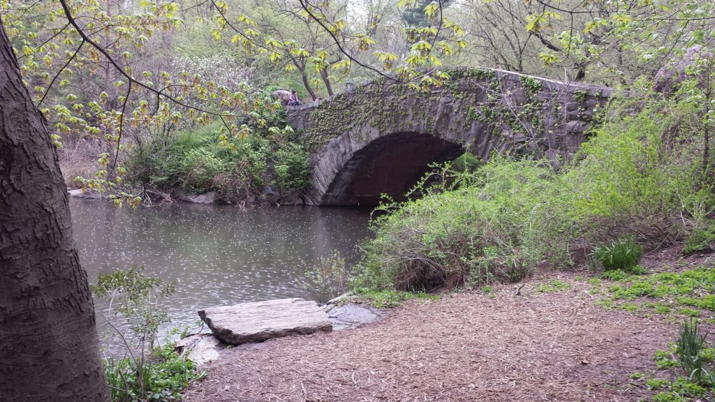 Gapstow Bridge